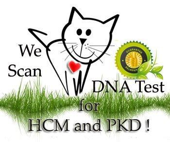 DNA_test